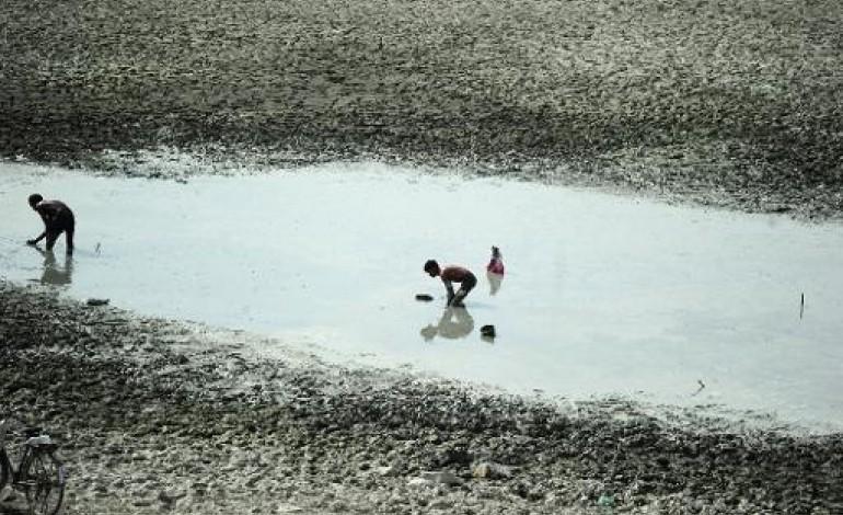Hyderabad (Inde) (AFP). Inde: la vague de chaleur tue 800 personnes et ne montre aucun fléchissement