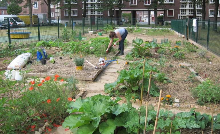 Un nouveau jardin partag rouen - Vive le jardin st lo ...