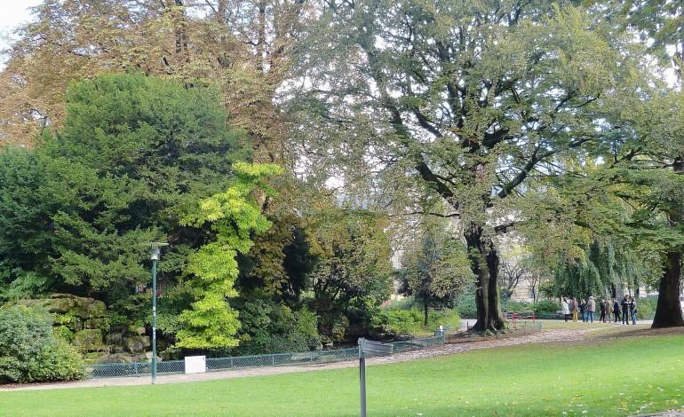 Projet Coeur de Métropole à Rouen : le square Verdrel réaménagé et inaccessible pendant un an
