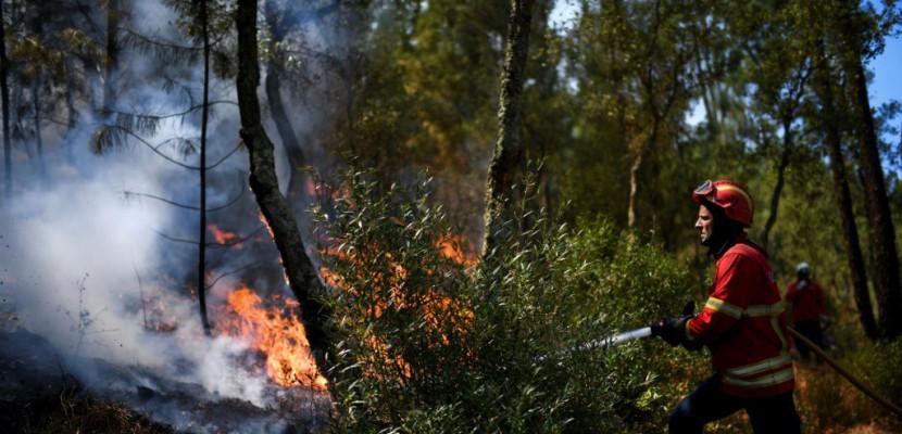Le Portugal sous la canicule, en proie à de violents incendies