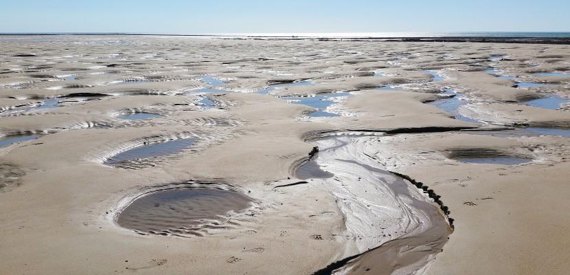 Blainville-sur-Mer. Coefficients de marée : pêcheurs à pied, attention à la réglementation