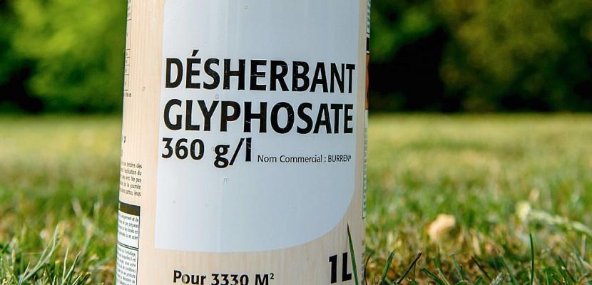 UE: vote attendu sur le glyphosate, mais l'incertitude persiste