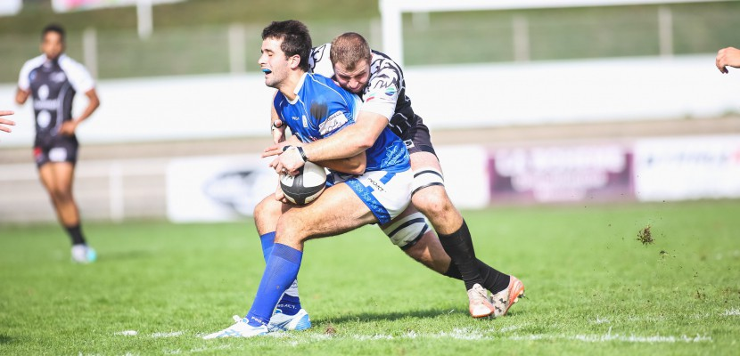 Rugby (Fédérale 1) : le Rouen Normandie Rugby reçoit Albi