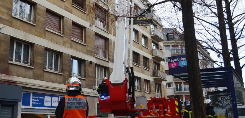 Tempête Eleanor : point de situation à la mi-journée en Seine-Maritime