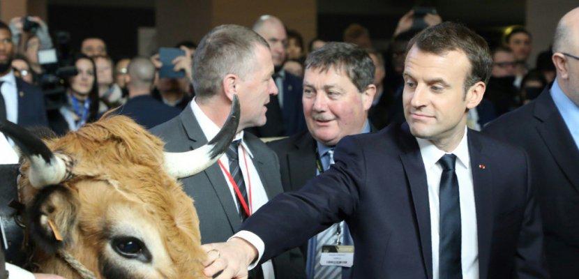 Macron en