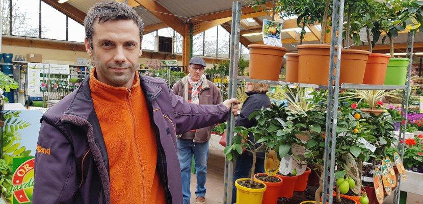 Rouen. Froid en Seine-Maritime : les astuces pour protéger ses plantes