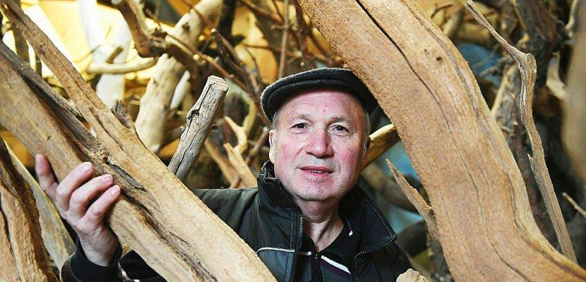 Hervé Mayon, créateur d'arbres