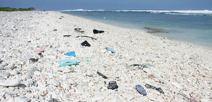 Des scientifiques créent par hasard une enzyme dévoreuse de plastique