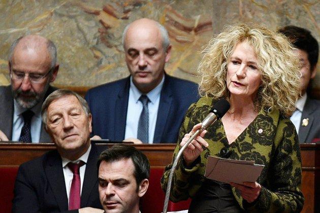 Les sept familles LREM à l'Assemblée