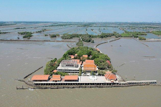 En Thaïlande, replanter la mangrove contre l'érosion côtière... et pour sauver un temple
