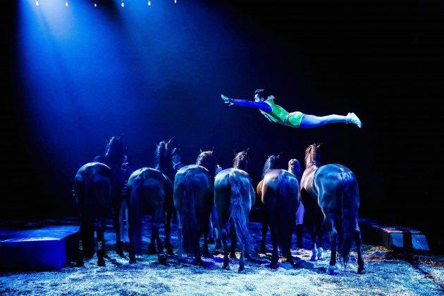 Le cirque Alexis Gruss s'installe au Zénith de Caen