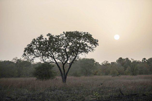 L'un des touristes disparus au Bénin est un Manchois