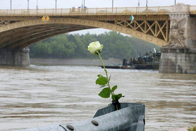 """""""Des personnes criaient à l'aide"""": des touristes choqués après le naufrage sur le Danube"""