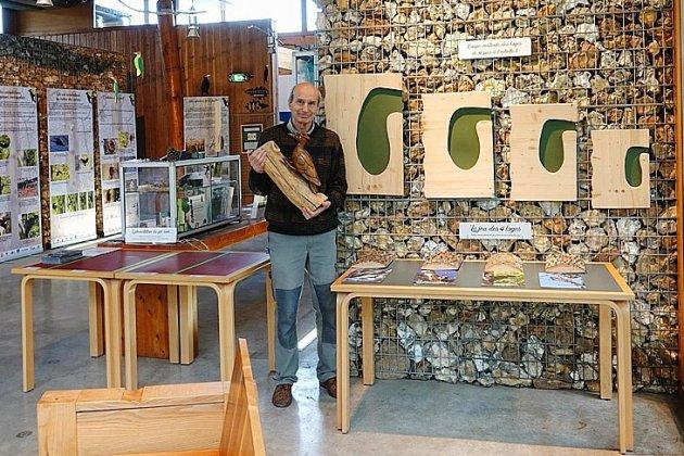 Près de Rouen, les secrets des pics se révèlent à la Maison des forêts
