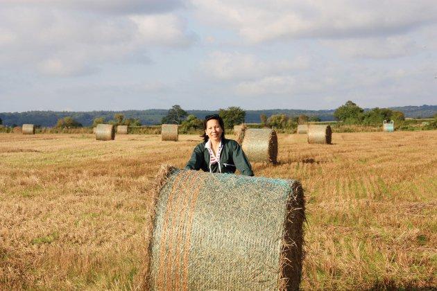 Normandie: une startup va recycler les déchets plastiques agricoles