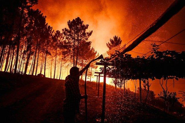 Portugal: mobilisation exceptionnelle pour lutter contre un vaste incendie