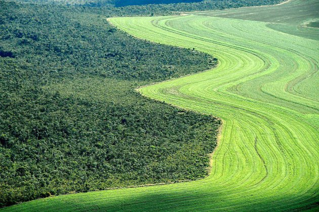L'humanité au défi de nourrir 10 milliards de personnes sans ravager la planète