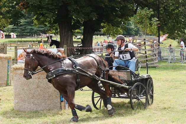 8e fête du cheval à l'Abbaye du Valasse
