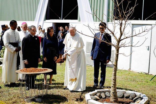 Madagascar: le pape pousse un cri d'alarme sur la déforestation