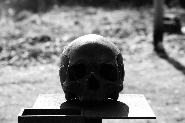 Des os humains découverts au Havre