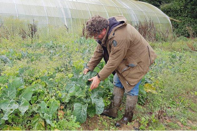 Lubrizol : les restrictions agricoles levées, la surveillance maintenue