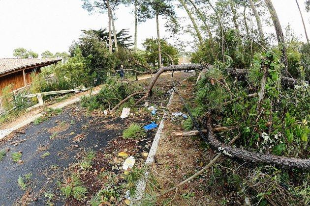 Tempête Amélie: 35.000 foyers sans électricité à 6H45