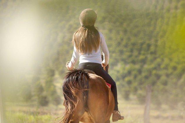 Eure. Près d'Évreux, renversée à cheval, une jeune femme grièvement blessée