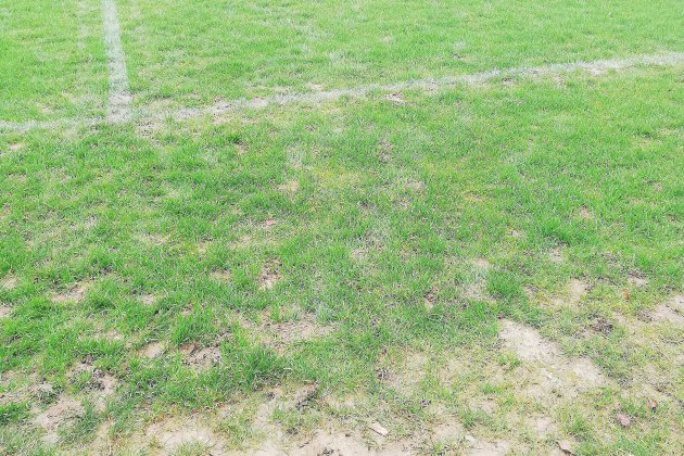 Pluie: à quel moment décide-t-on de fermer les terrains sportifs?
