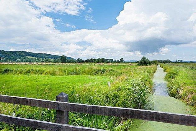 Le Parc naturel régional des Boucles de la Seine s'anime cet été