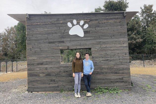 Un centre aéré pour chiens va ouvrir ses portes le 14 septembre