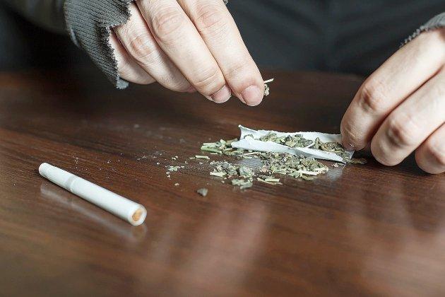 Cannabis, cocaïne et argent liquide: un trafic de drogue démantelé