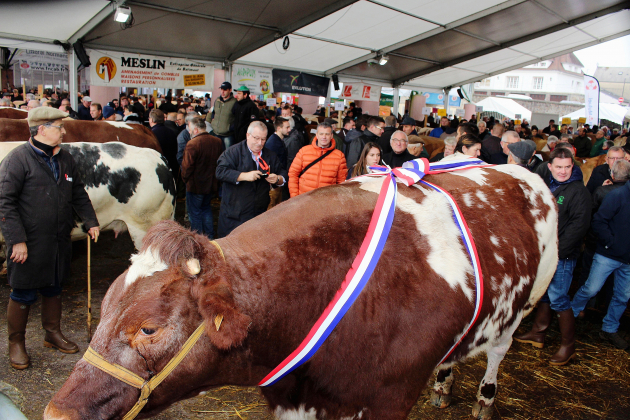 Le Festival de la viande prévu en novembre 2020 est annulé