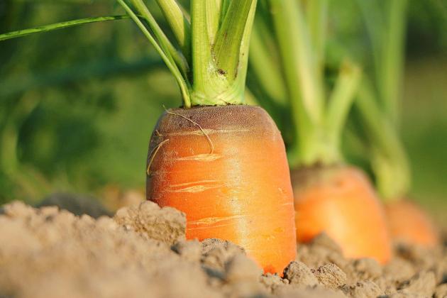 Mon conjoint est agriculteur.Quelles attestations doit-il remplir?
