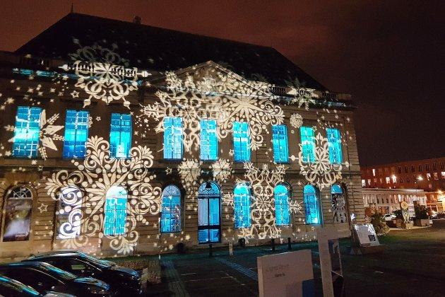 Le Havre. Le Muséum s'illumine pour Noël