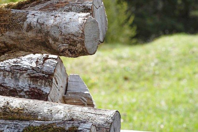 Du bois de chauffage à la disposition des habitants de la ville