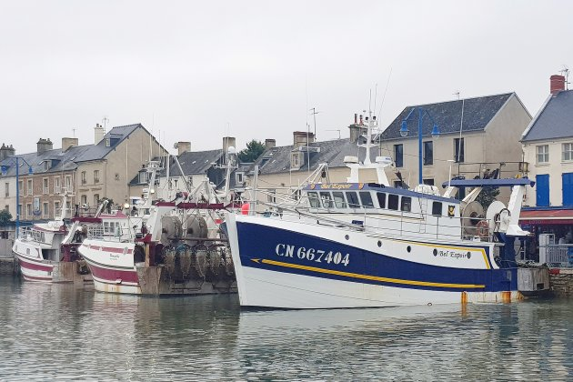 Brexit. Satisfaction d'un accord trouvé pour les marins-pêcheurs normands