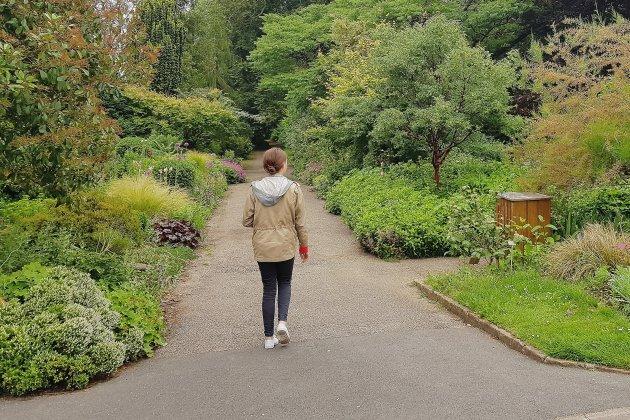 Vers l'ouverture d'un espace de restauration dans l'Orangerie du jardin des plantes