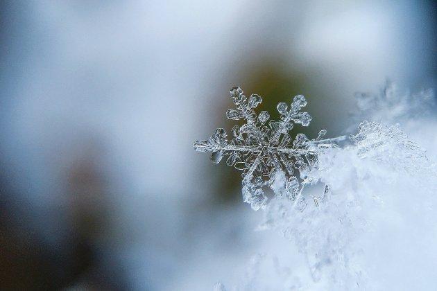 De la neige et des températures hivernales toute la semaine