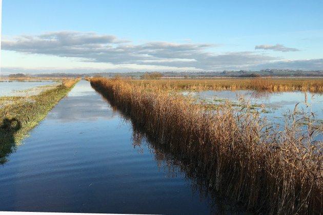 Découvrez le Parc naturel régional des marais du Cotentin et du Bessin