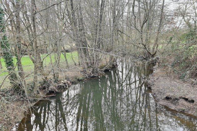 Le Département plante des haies contre l'érosion le long des rivières