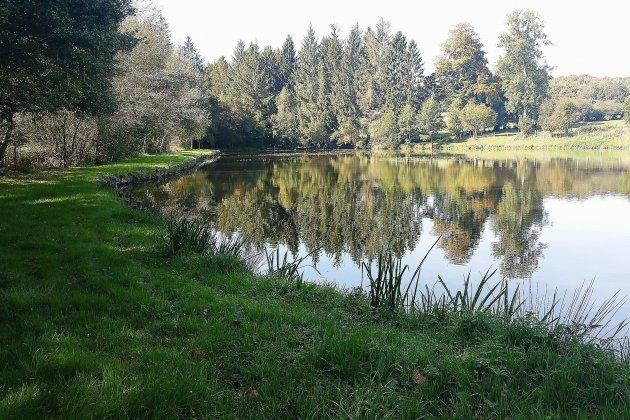 Clairière de Bresolettes: profusion et beauté de la faune et de la flore