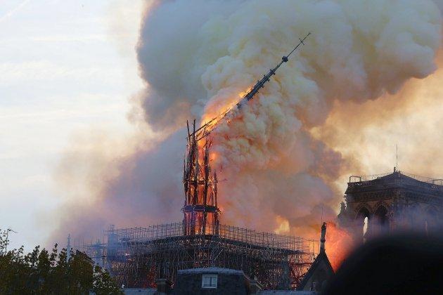 Deuxans après l'incendie, des chênes normands pour reconstruire Notre-Dame de Paris