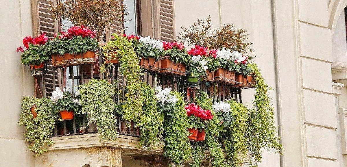 Le concoursdes jardins, maisons et façades fleuris est de retour
