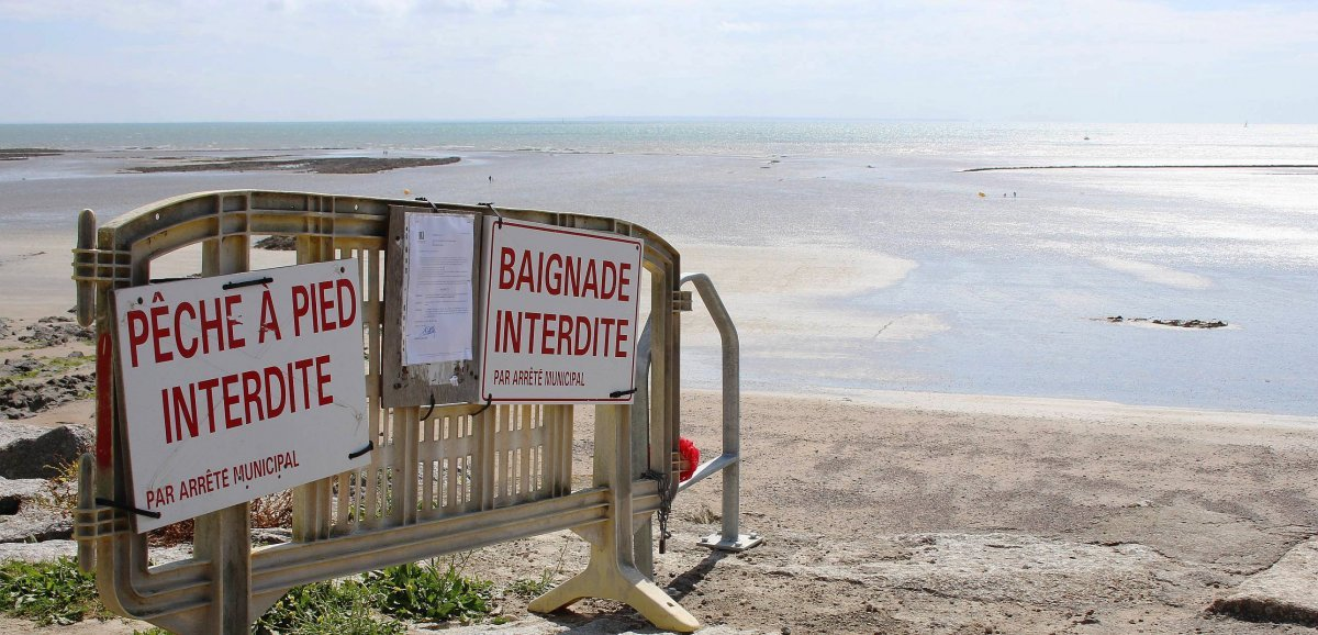 Baignade interdite sur plusieurs plages de Granville et Saint-Pair-sur-Mer