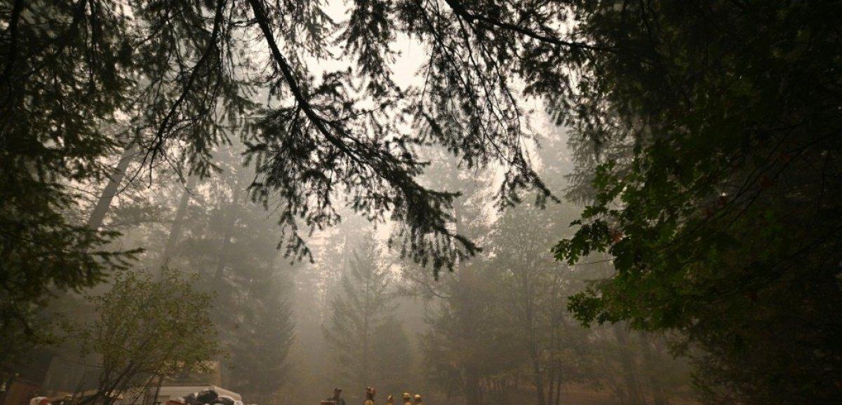 Depuis son cabanon en Californie, il a choisi d'affronter les incendies