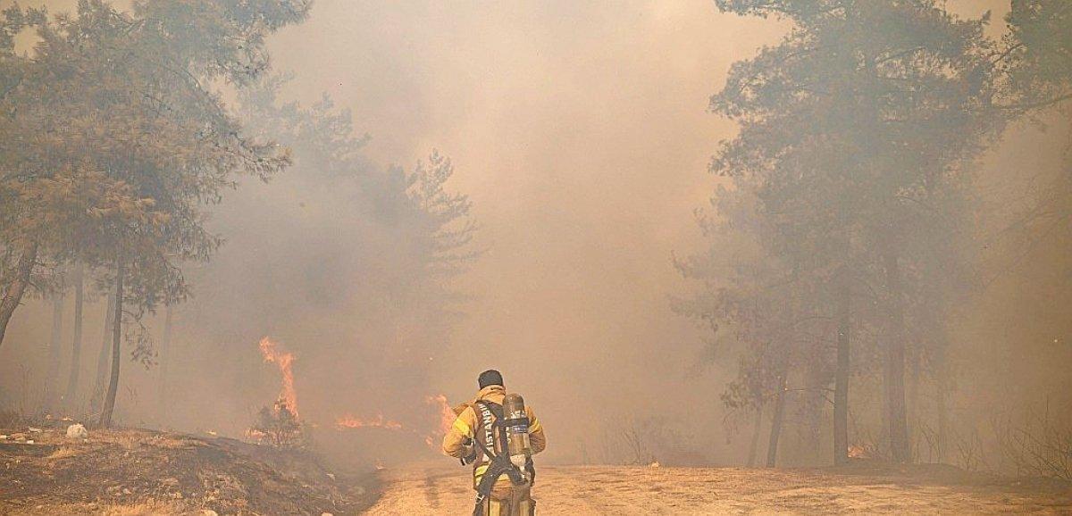 Incendies en Turquie: une centrale thermique menacée, les évacuations continuent