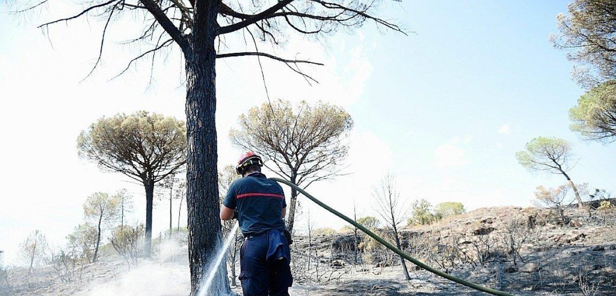 L'incendie sur la Côte d'Azur est maîtrisé, pas encore éteint