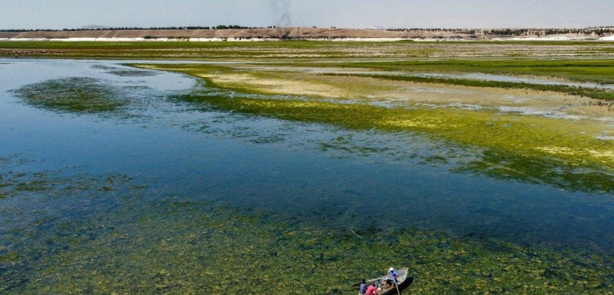Syrie: sécheresse et géopolitique menacent les riverains du mythique Euphrate