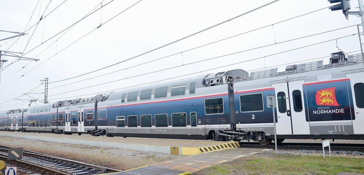 Seine-Maritime. Heurté par un train, l'homme blessé trouve refuge chez lui