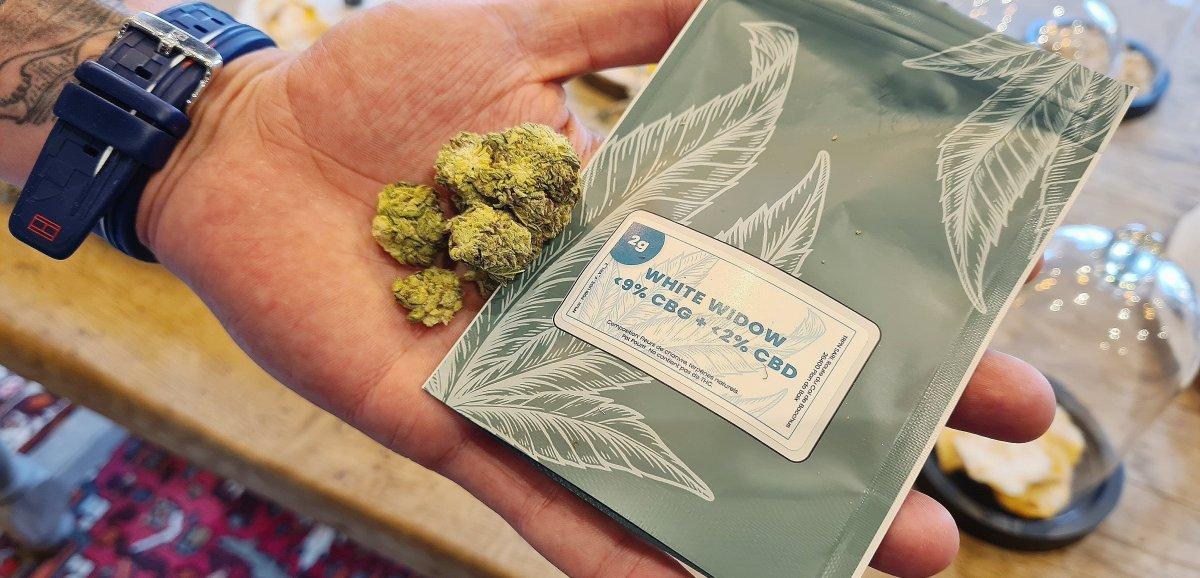 [Enquête] Calvados. Le CBD, une alternative au cannabis?